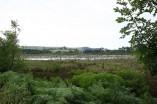 Parque Natural de Oyambre